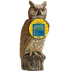 Dalen Gardeneer SRHO-4 Solar Rotating Head Owl