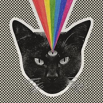 Never Shout Never � Black Cat
