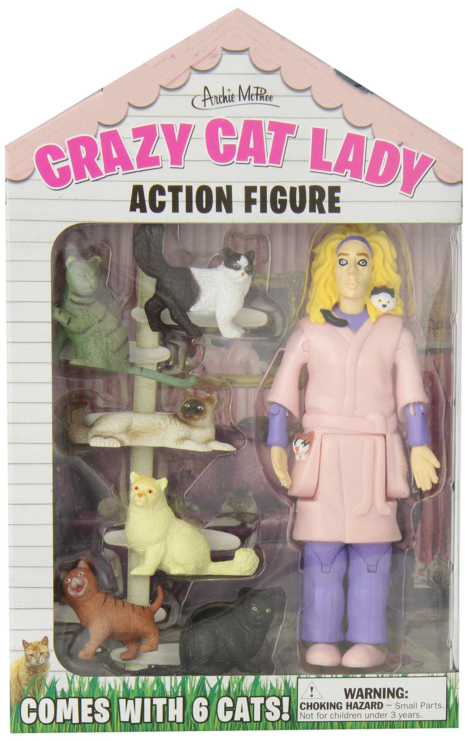 Accoutrements Crazy Cat Lady Action Figure Set | eBay