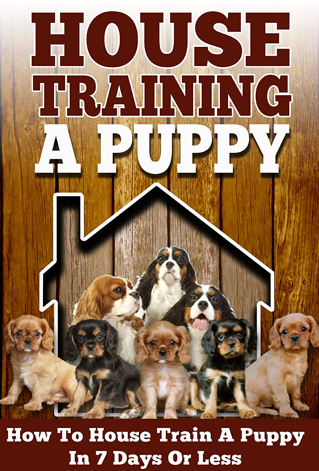 Web-House-Training-A-Puppy-How-To-House-Train-Your-Puppy-In-7-Days-Or-Less