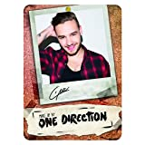 Make Up by One Direction The Complete Palette Collection Makeup, Liam, 16 Count