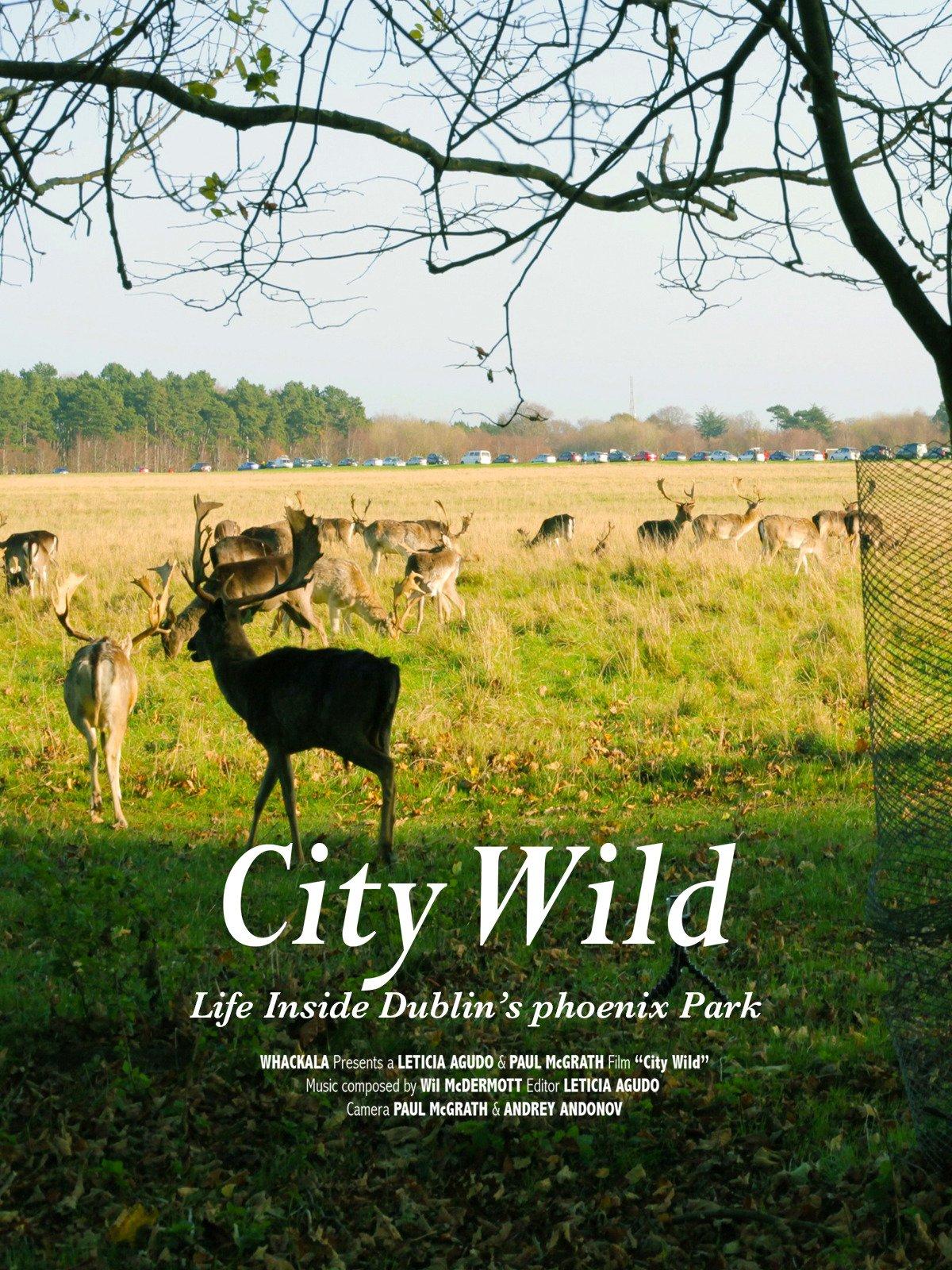 City Wild