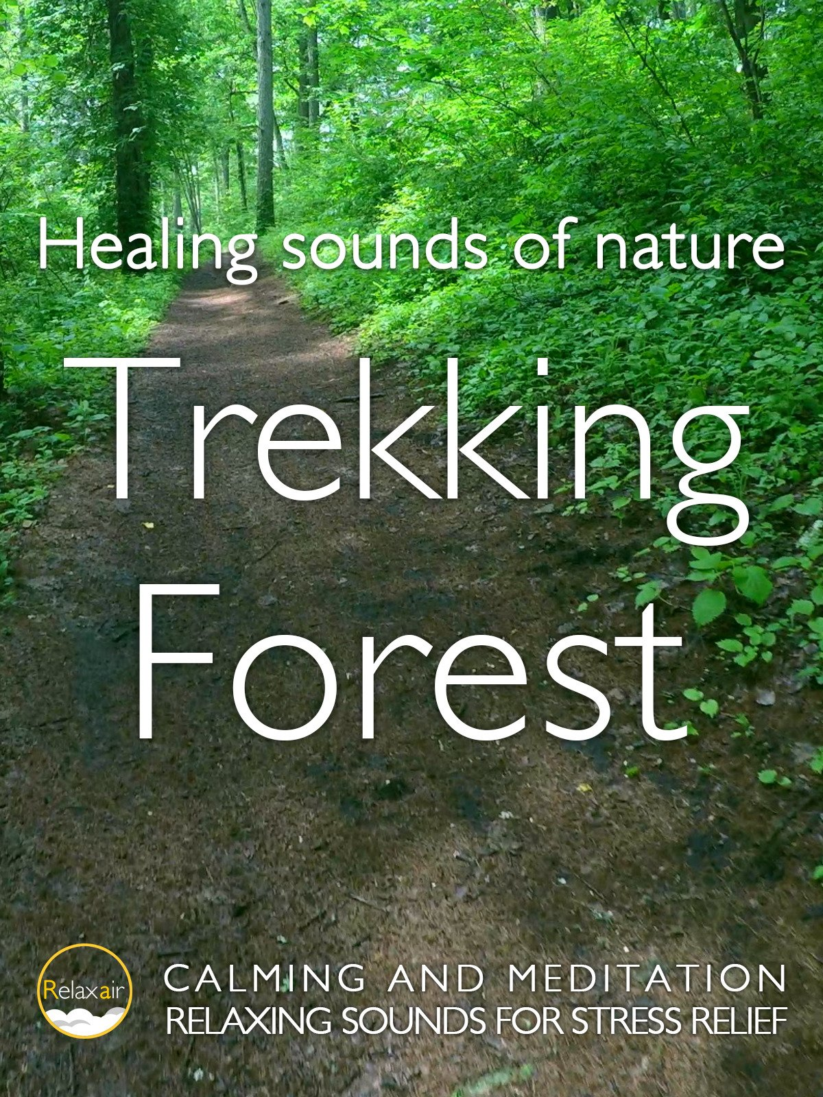 Healing Sound of Nature Trekking Forest Calming and Meditation Relaxing Sound for Stress relief