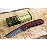Buckshot Knives PBK220 Thumb Open Spring Assisted Tanto Cleaver Classic Wood Handle Pocket Knives (PBK220DS) (Color: PBK220DS)