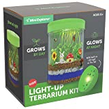 Mini Explorer Light-up Terrarium Kit for Kids with LED Light on Lid | Create Your Own Customized Mini Garden in a Jar that Glows at Night | Great Science Kits Gifts for Children | Kids Toys | by