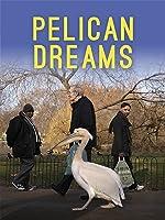 Pelican Dreams [HD]