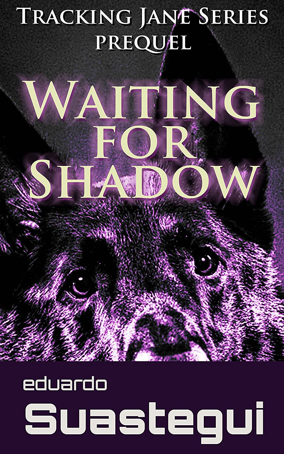 Waiting for Shadow: Tracking Jane, prequel by Eduardo Suastegui