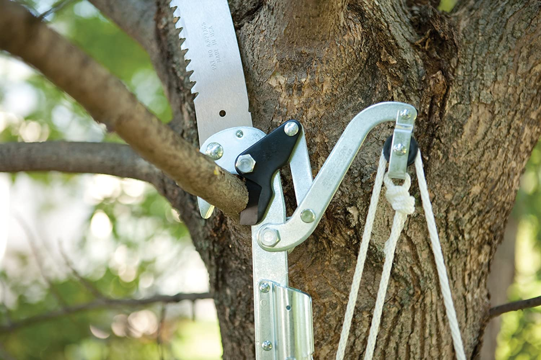 Extendable Tree Saw : Fiskars foot power lever extendable tree pruner