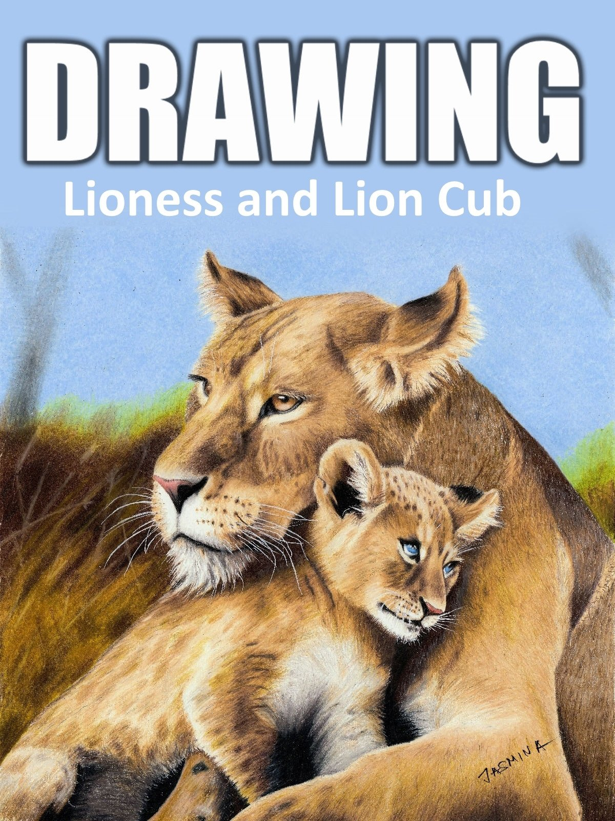Clip: Drawing Lioness and Lion Cub