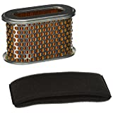 Stens 102-244 Air Filter Combo Replaces Honda 17210-ZF5-505 17210-ZE8-013 17210-ZE8-003 17210-ZF5-010 Napa 7-02249 Lesco 050031