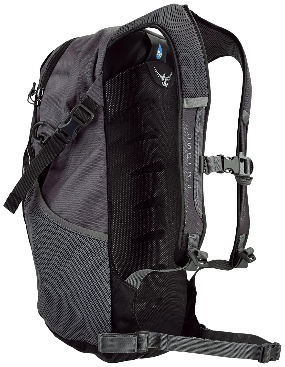 EPIC REVIEW • Is the Osprey Daylite Plus for you? (April 2019)