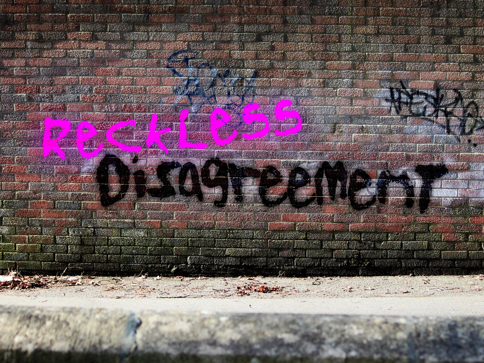 Reckless Disagreement - Season 1
