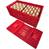 RITE FARM PRODUCTS EGG TRAY CARTON TRANSPORT CRATE CHICKEN SHIPPING POULTRY CASE (Color: Red)