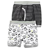 Carter's Boy`s 2-Pack Boxer Briefs (8, Dinosaurs (D31G137) / Black/Grey/Stripes)
