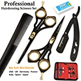 Saaqaans SQKIT Professional Hairdressing Scissors Set - Package includes 1 x Barber Scissor + 1 x Thinning Shear + 1 x Straight Edge Razor + 1 x Hair Comb Plus Stylish Black Scissors Pouch 100% FREE!!