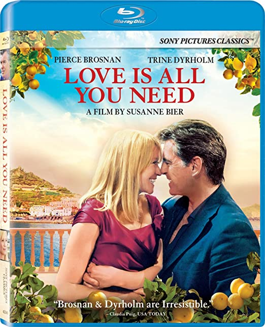 Todo lo que Necesitas es Amor, Año 2012, 720p Latino