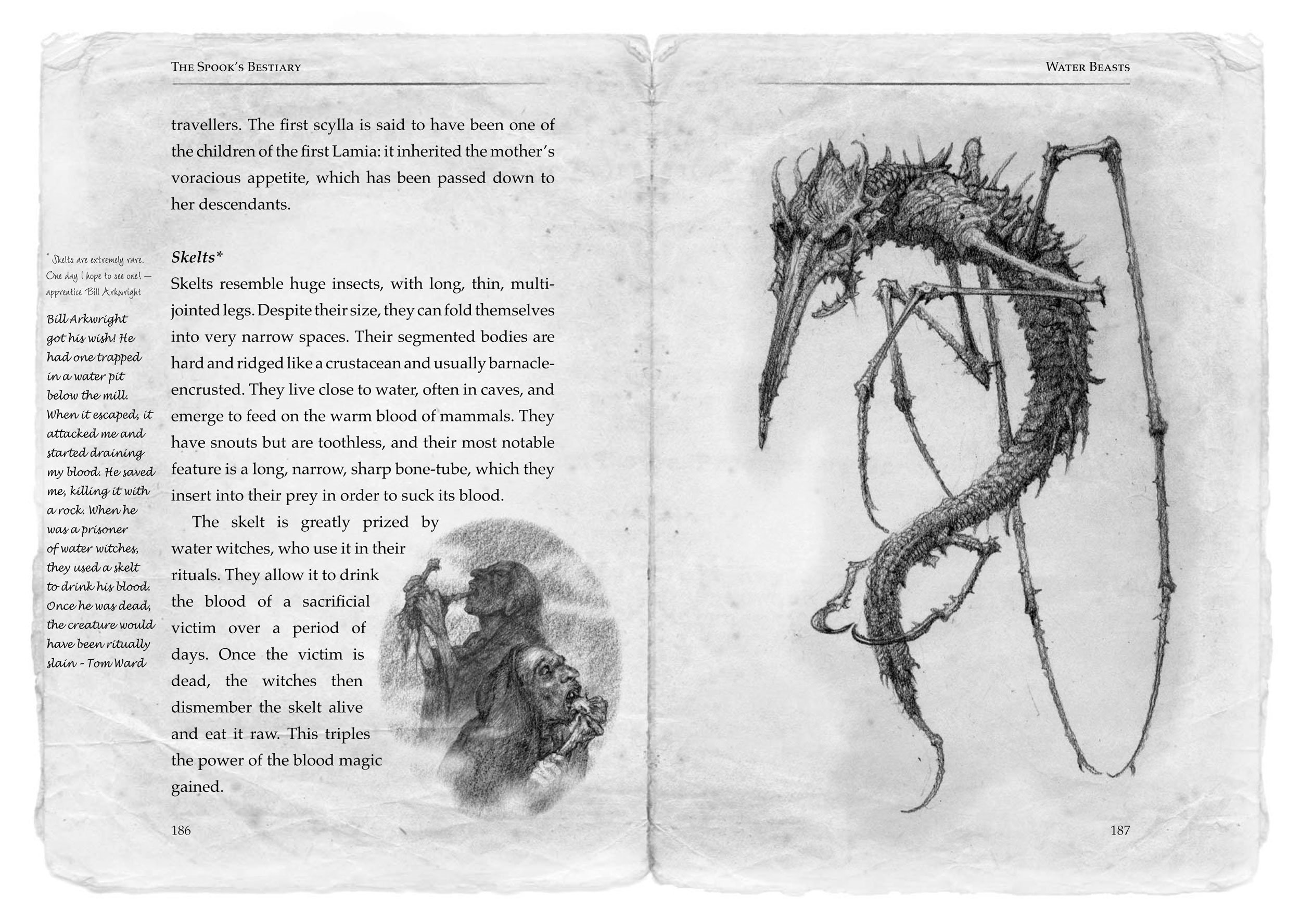Buy Spook's Bestiary (the Wardstone Chronicles) Book Online At Low Prices  In India  Spook's Bestiary (the Wardstone Chronicles) Reviews & Ratings   Amazon