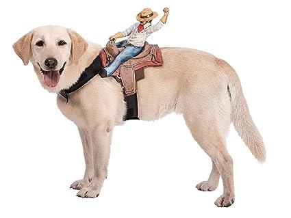 Riders Cowboy Pet Costume