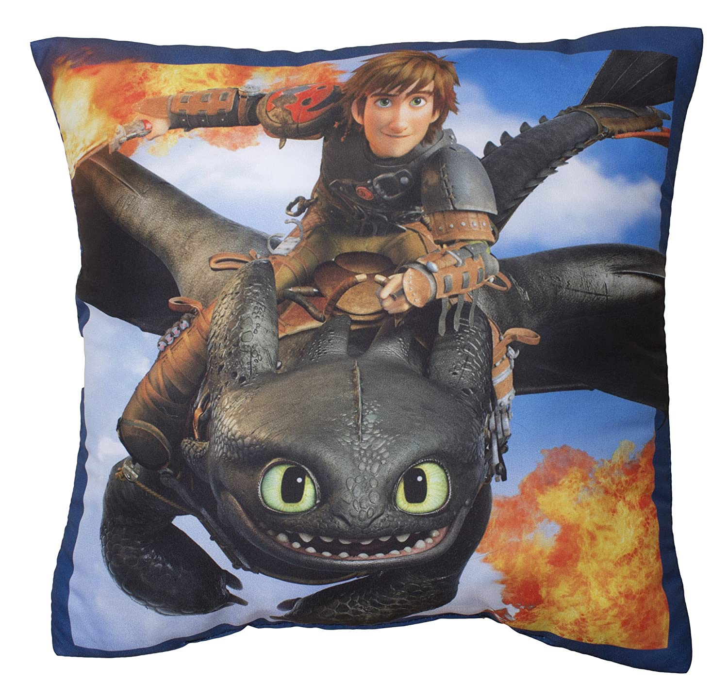Toothless Dragon Blanket Dragons Toothless Cushion