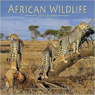 African Wildlife Calendar - 2015 Wall calendars - Animal Calendar - Monthly Wall Calendar by Avonside