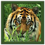 Wild Animals Puzzle: JigSaw ~ Jinner