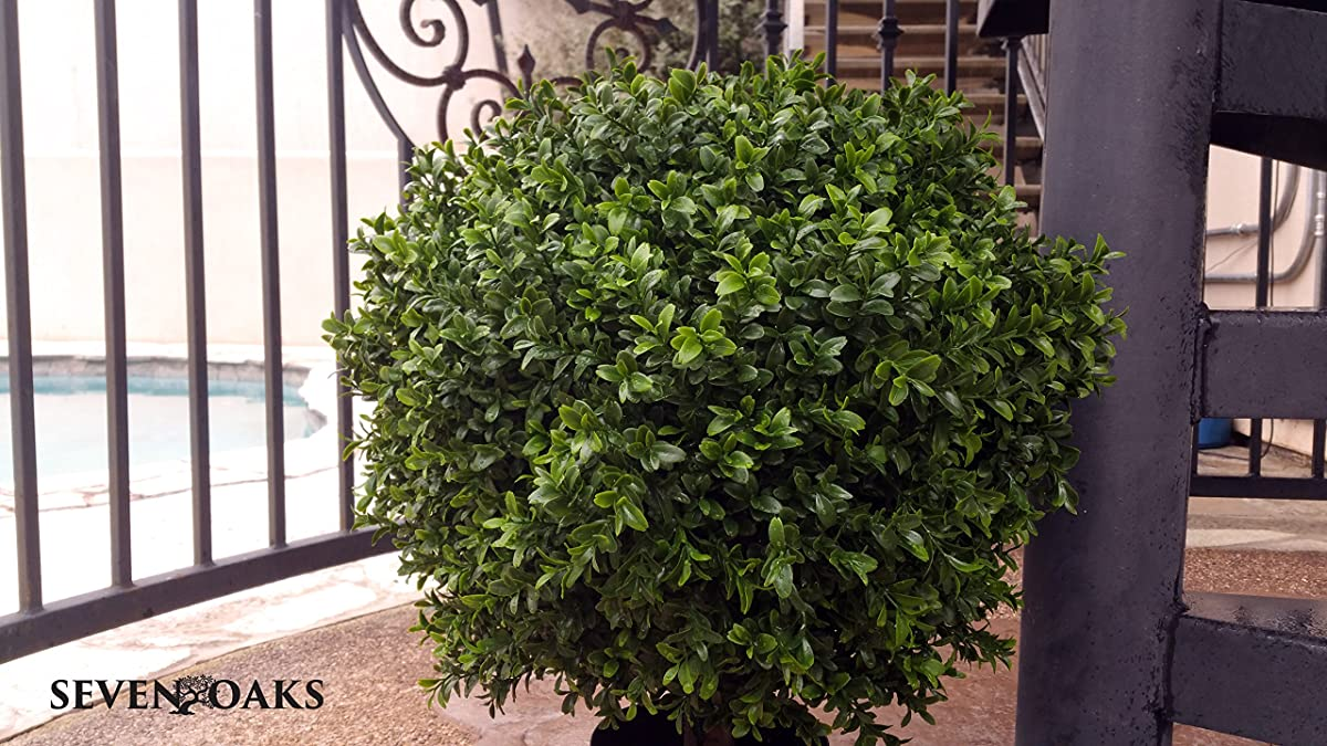 """LIMITED TIME LOW PRICE FOR FIRST TIME ON AMAZON 
