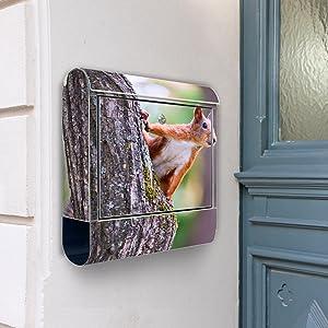 Design Briefkasten Edelstahl Briefkästen 38x42x11 von banjado mit Motiv Eichhörnchen   Bewertungen