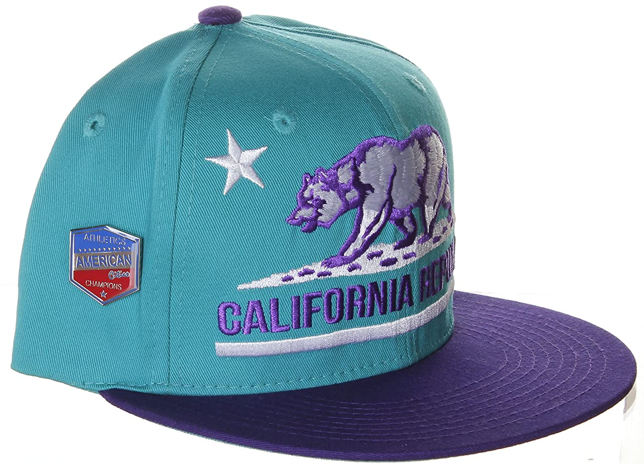 California Republic Flat Bill Vintage Style Snapback Hat Cap 4