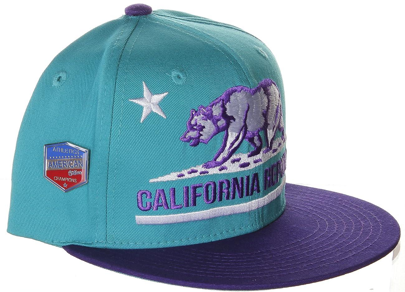 California Republic Flat Bill Vintage Style Snapback Hat Cap 4