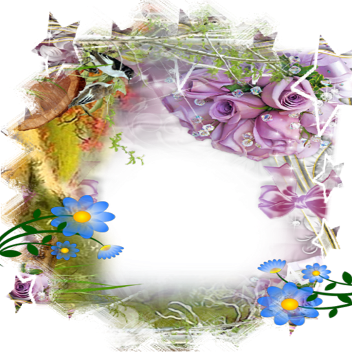 conveyors Photo flower Frames (Pet Pic Frame compare prices)