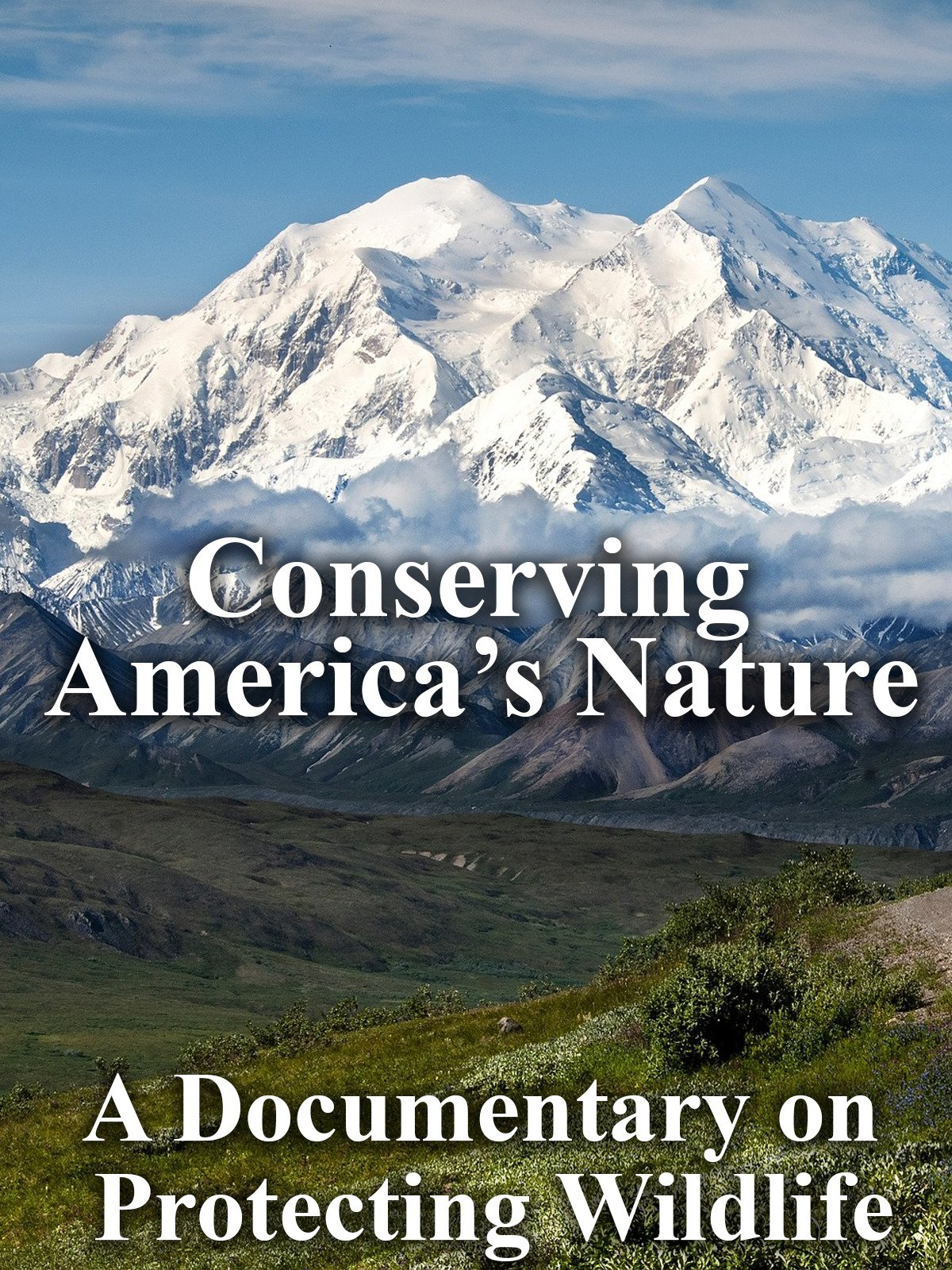 Conserving America's Nature A Documentary on Protecting Wildlife on Amazon Prime Video UK