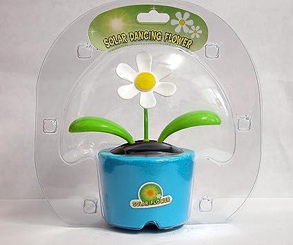 Solar Powered Dancing Flower India Solar Dancing Flower Daisy