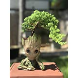 Bonsai Tree Pot Baby Groot (Bonsai Pot) (Color: Light Brown, Tamaño: 6)