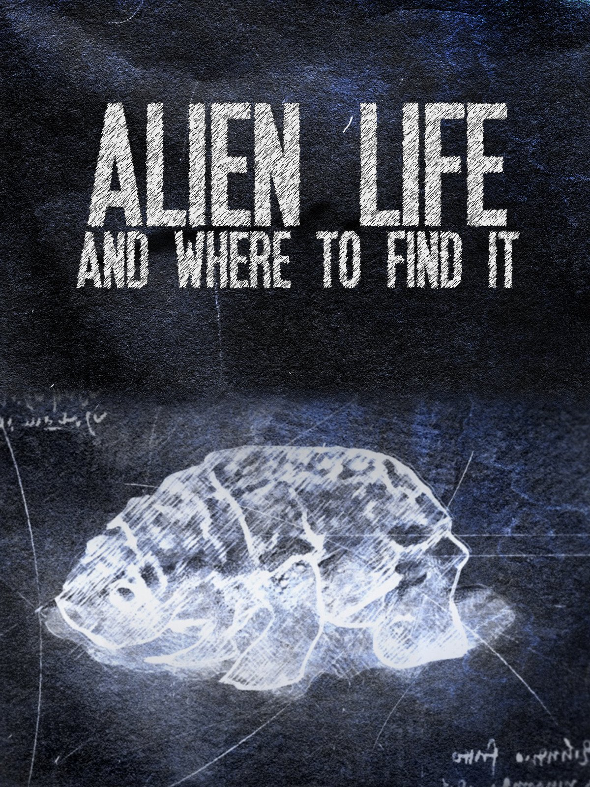 Alien Life & Where To Find It