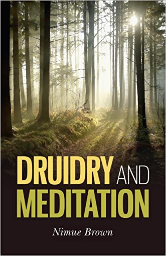 Druidry and Meditation written by Nimue Brown