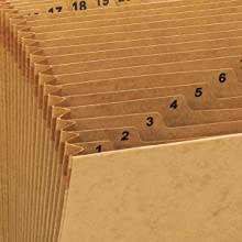 Smead Expanding File, Daily (1-31), 31 Pockets, Flap and Cord Closure, Letter Size, Kraft (70168)