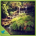 Green Garden Waterfall - Meditate in...