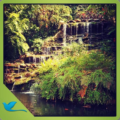 Green Garden Waterfall - Meditate in the Peaceful garden