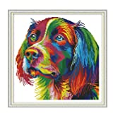 Cross Stitch Stamped Kit Quilt Pre-Printed Cross-Stitching Patterns for Beginner Kids & Adults– Embroidery Needlepoint Starter Kits,Rainbow Dog (Color: Stamped 13.6×13.6inch, Tamaño: 13.6x13.6 inch)