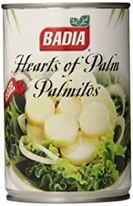 Hearts of Palm (Swamp Cabbage)