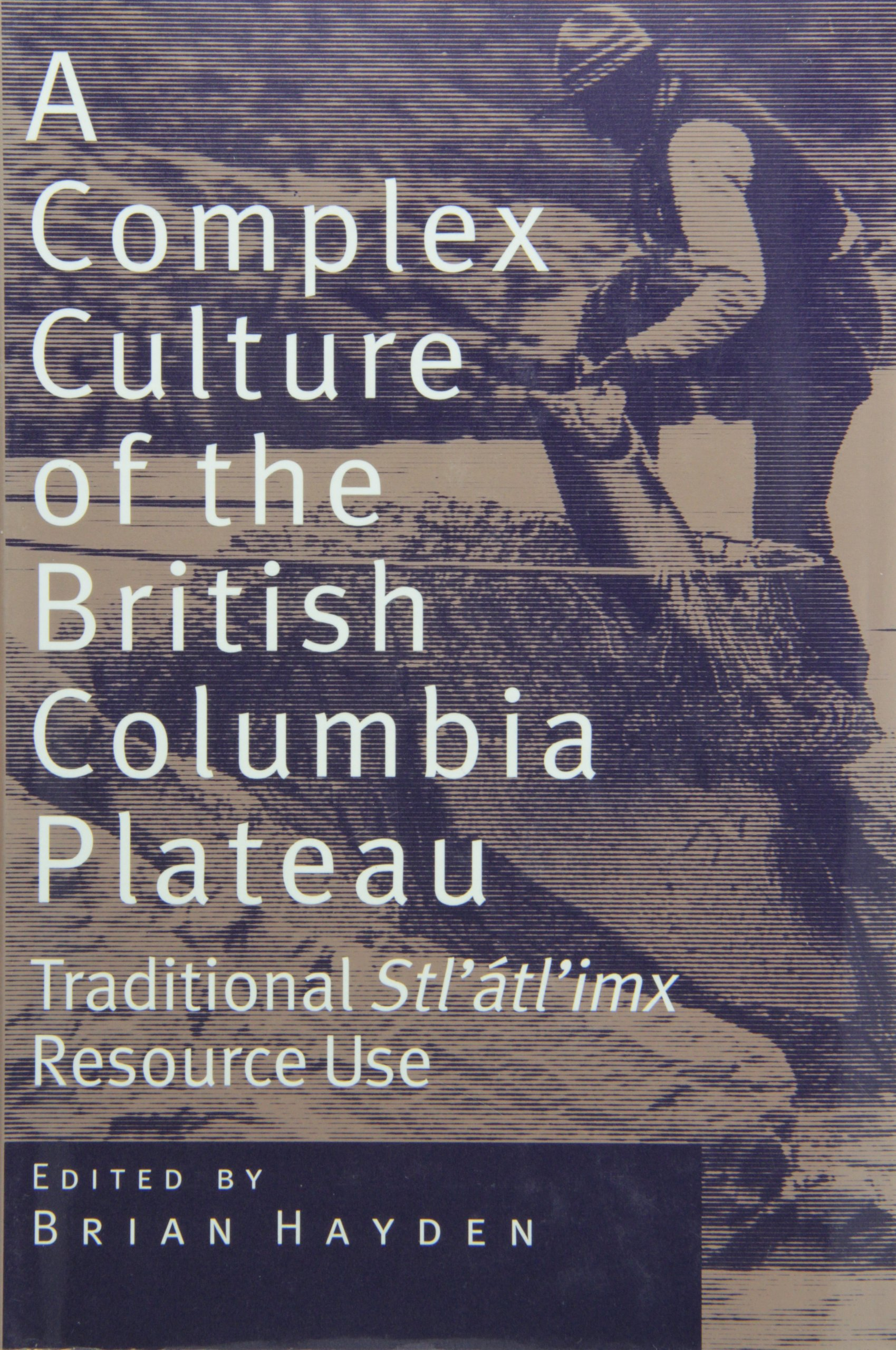 indigenous dictionary language to english