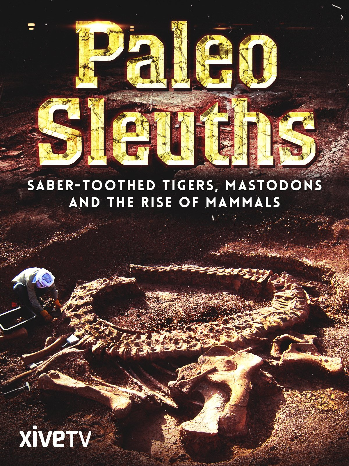 Paleo Sleuths: Saber-Toothed Tigers, Mastodons, and the Rise of Mammals on Amazon Prime Instant Video UK