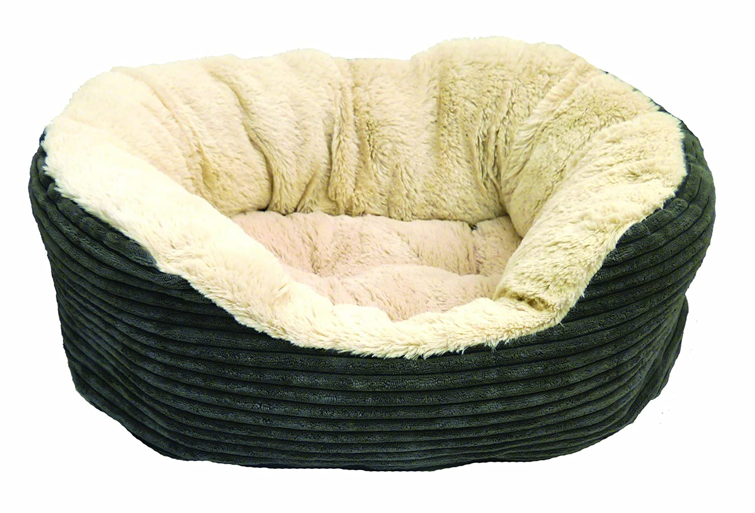 Jumbo Dog Bed Amazon