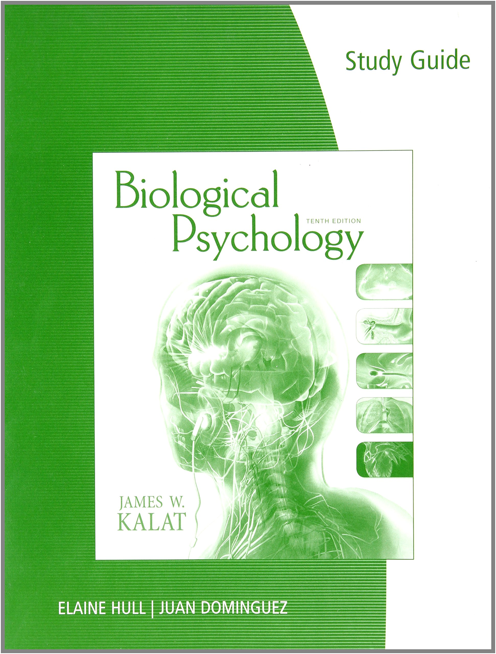 biological psychology Journal description biological psychology publishes original scientific papers on the biological aspects of psychological states and processes.