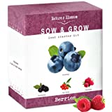 Nature's Blossom Fruit Growing Kit. The Beginner's Set to Grow 4 Types of Berries From Seed - Raspberries ; Blueberries ; Goji Berry ; Blackberries. Contains Planting Pots, Soil & Gardening Guide (Color: Purple, Tamaño: Small)
