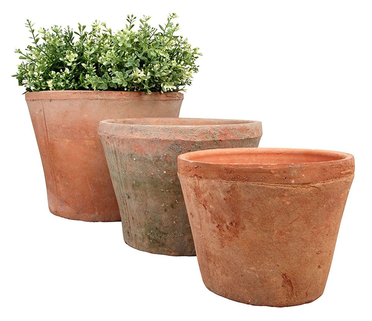 Aged Terra Cotta Pot