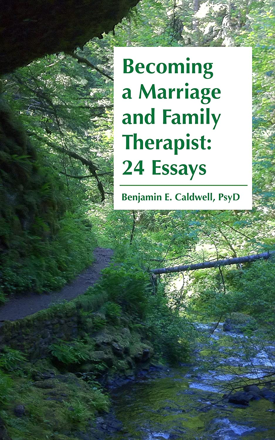 Becoming a Marriage and Family Therapist: 24 Essays by Benjamin E. Caldwell, PsyD