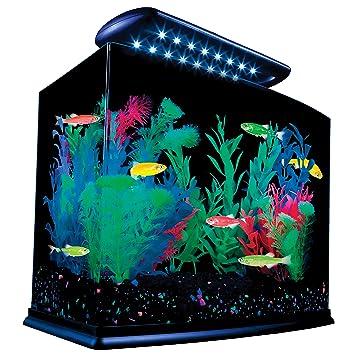 Glofish Tank Tetra 29005 GloFish Aquarium
