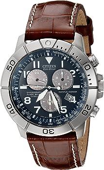 Citizen Eco-Drive Perpetual Calendar Chronograph Men's Watch