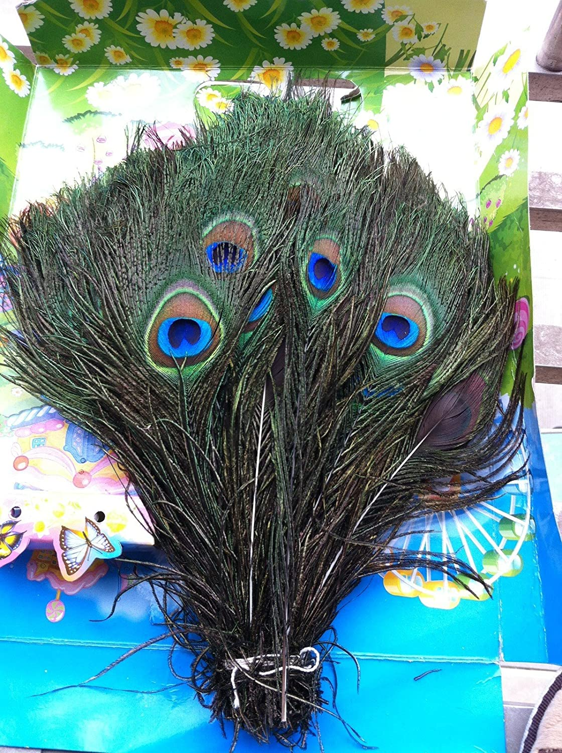 peacock costumes for girls and ladies halloween peacock